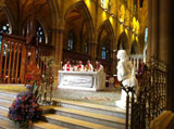 Archbishop Anthony Fisher OP to Celebrate Lourdes Healing Mass at St Mary's Cathedral